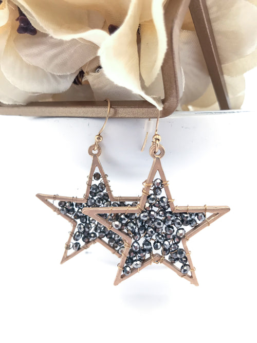 Starry Nights Dangle Earring