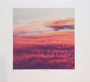 Sand Storm  | Ali Mitton | Limited Edition Print