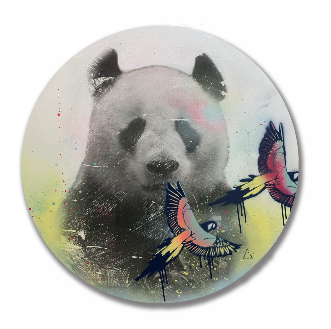 Team Panda I Carley Cornelissen | Mixed Media Assemblage