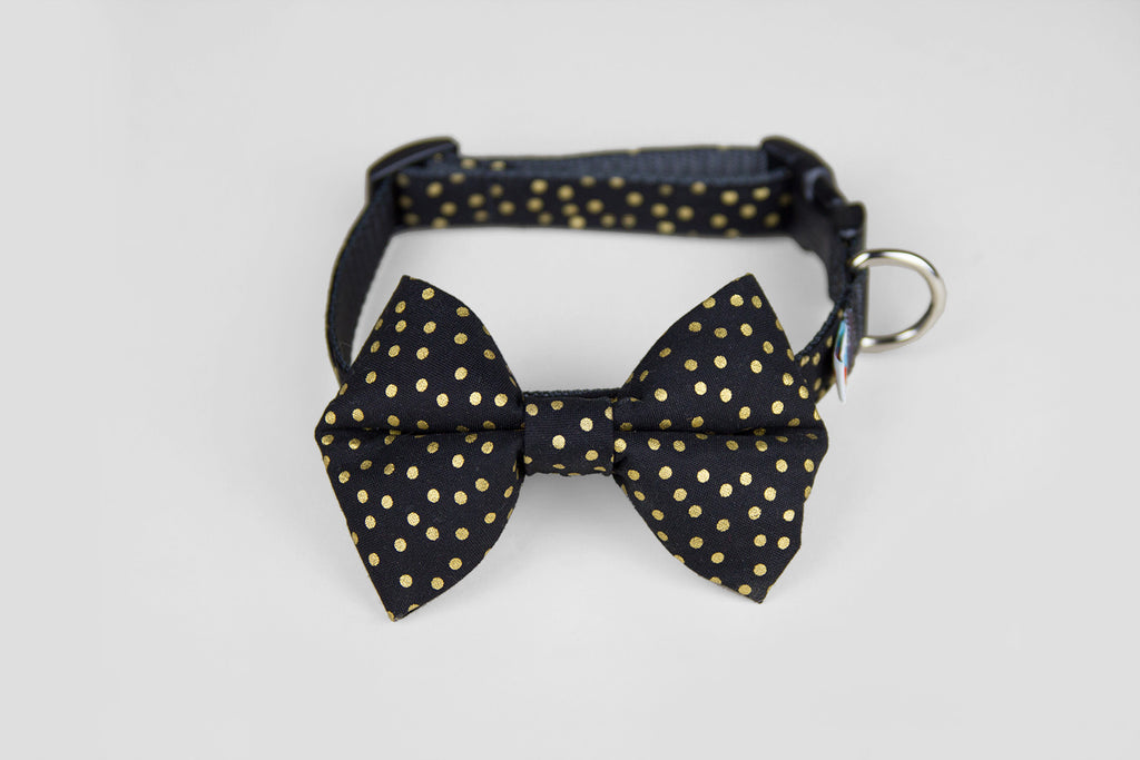 Wildebeest Bow Tie Collar in Black and Gold, Front View