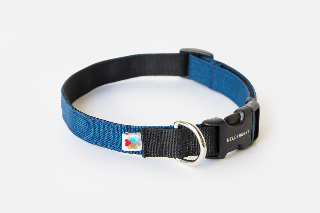 Funston Dog Collar / Navy