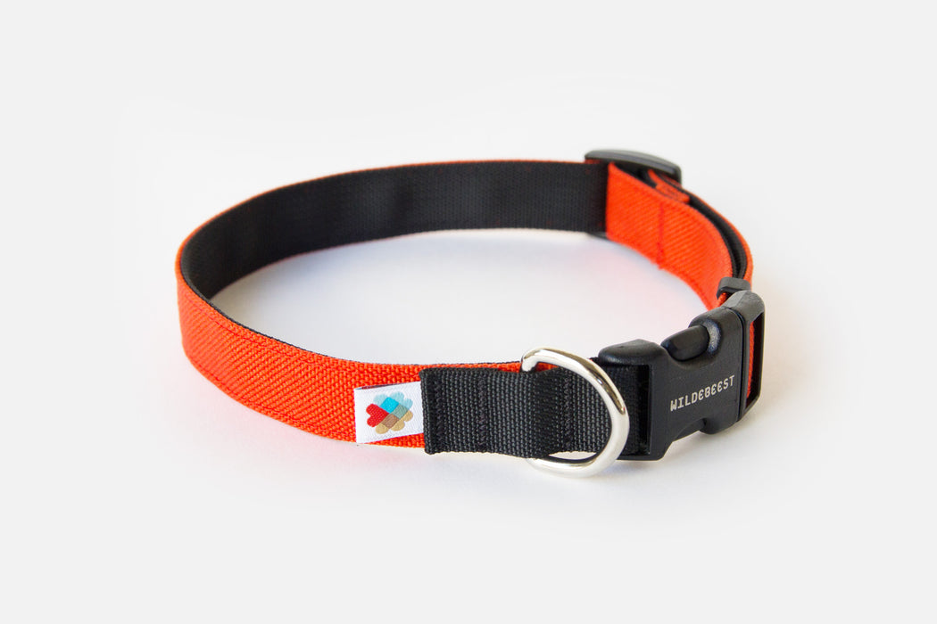 Funston Dog Collar / Orange