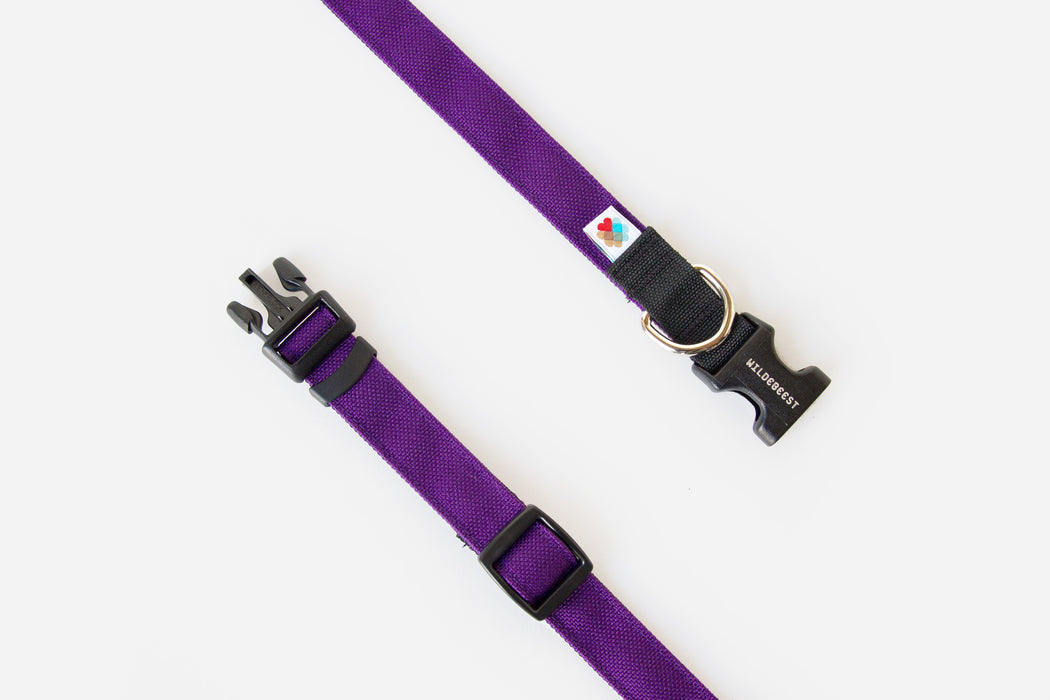 Funston Dog Collar / Purple