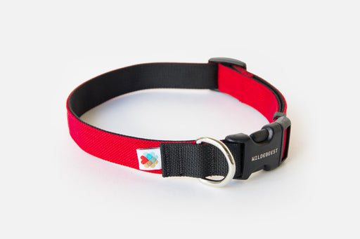 Funston Dog Collar / Red