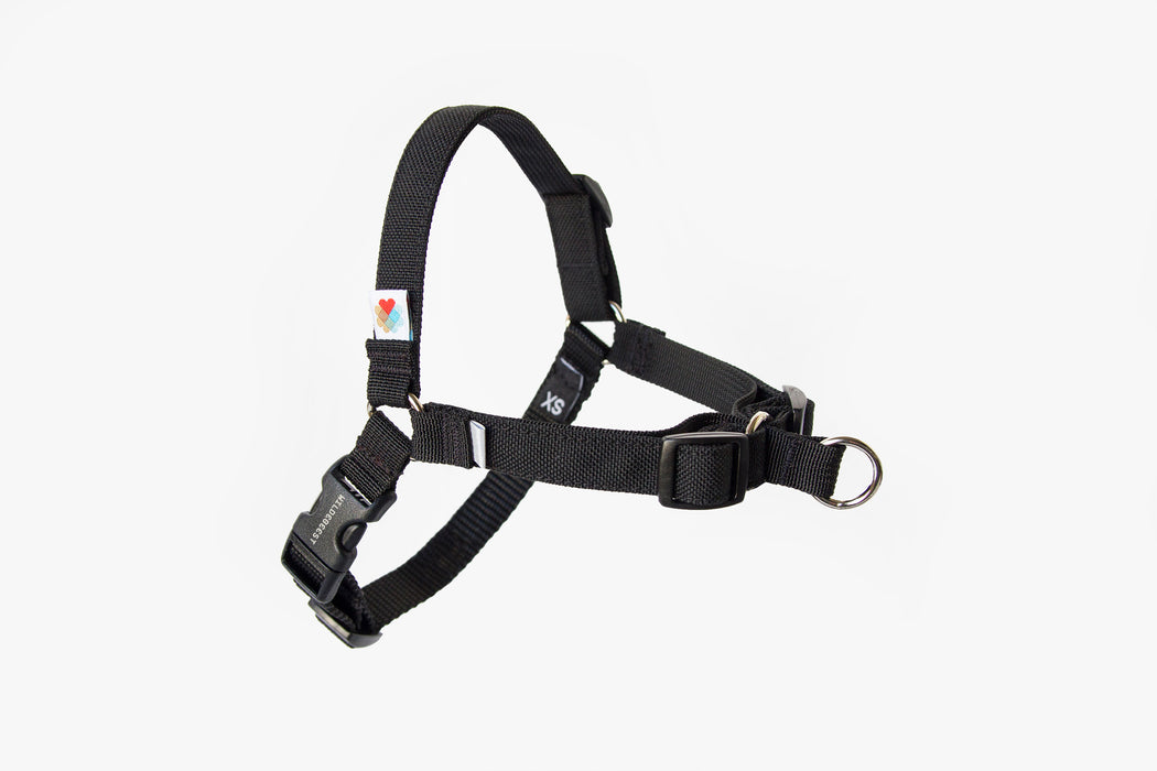 Linden No Pull Dog Harness / Black