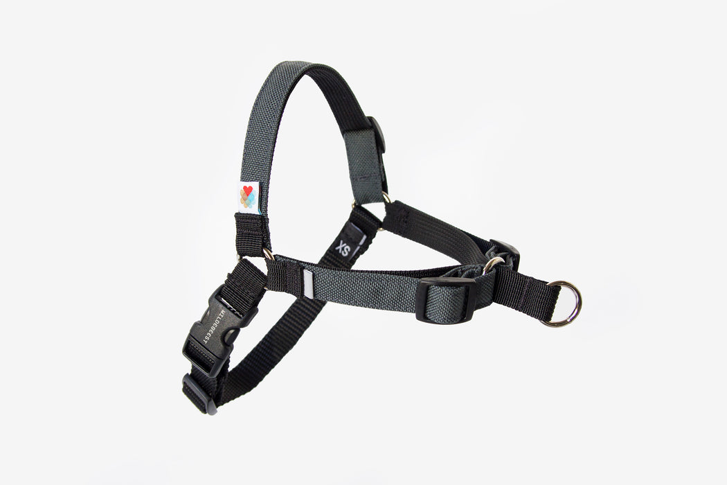 Linden No Pull Dog Harness / Charcoal