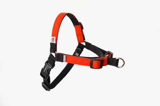 Linden No Pull Dog Harness / Orange