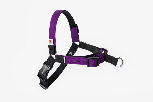 Linden No Pull Dog Harness / Purple