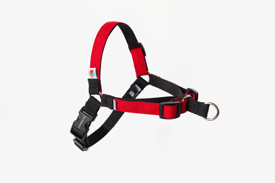 Linden No Pull Dog Harness / Red