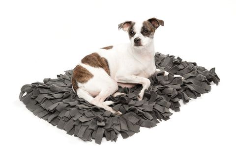 Meadow Dog Bed / Charcoal