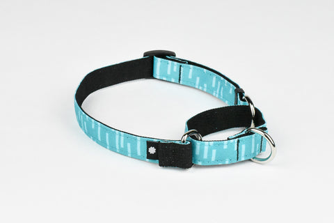 Pacifica Martingale Dog Collar / Aqua