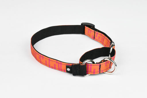 Pacifica Martingale Dog Collar / Coral - Wildebeest