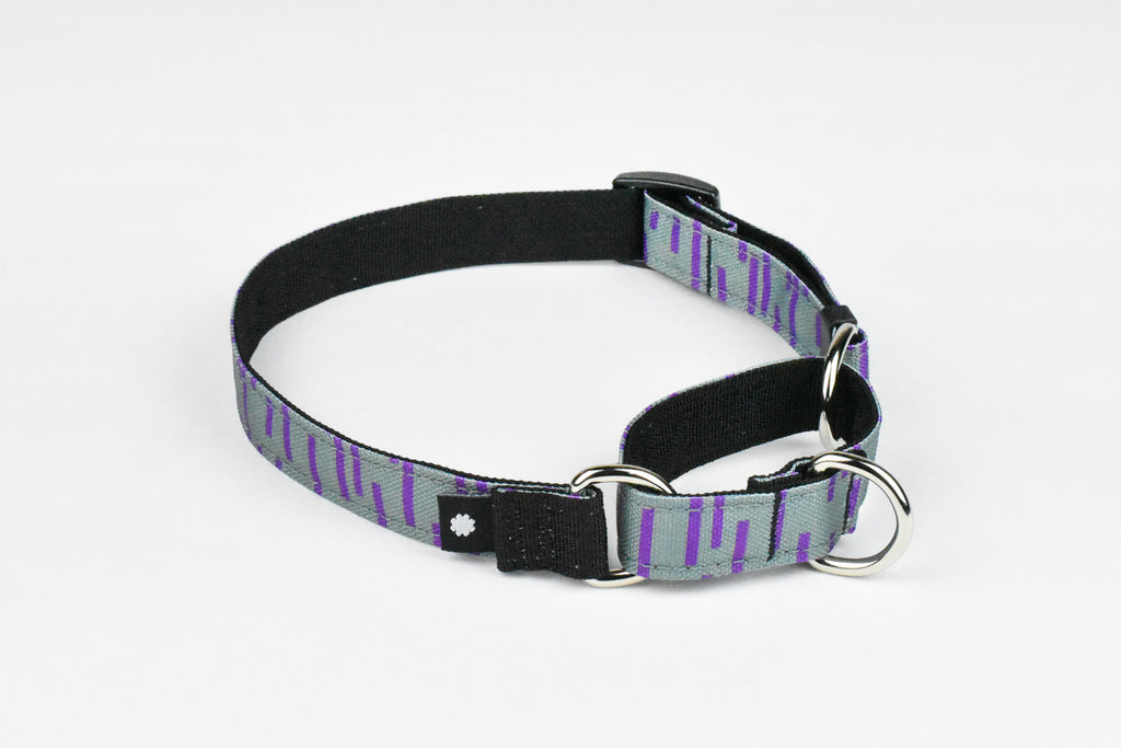 Pacifica Martingale Dog Collar / Grey