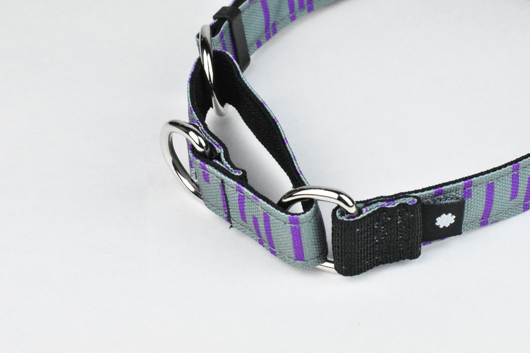 Pacifica Martingale Dog Collar / Grey - Wildebeest