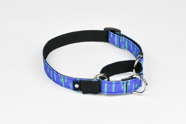 Pacifica Martingale Dog Collar / Indigo - Wildebeest