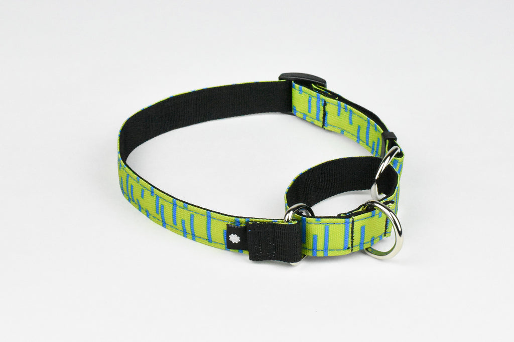 Pacifica Martingale Dog Collar / Lime