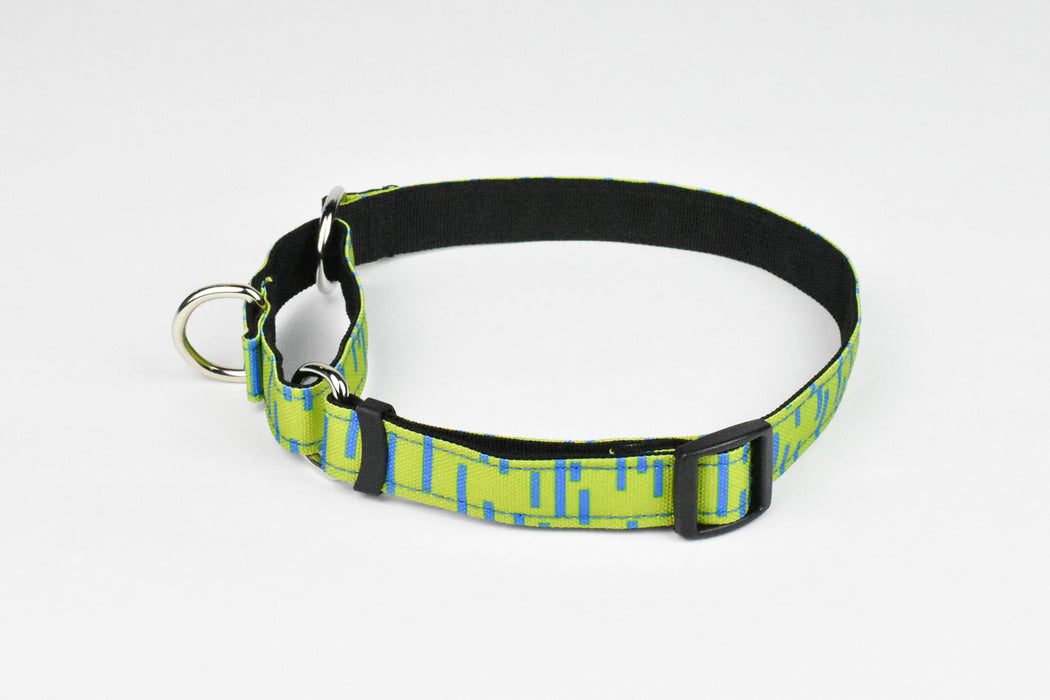 Pacifica Martingale Dog Collar / Lime - Wildebeest
