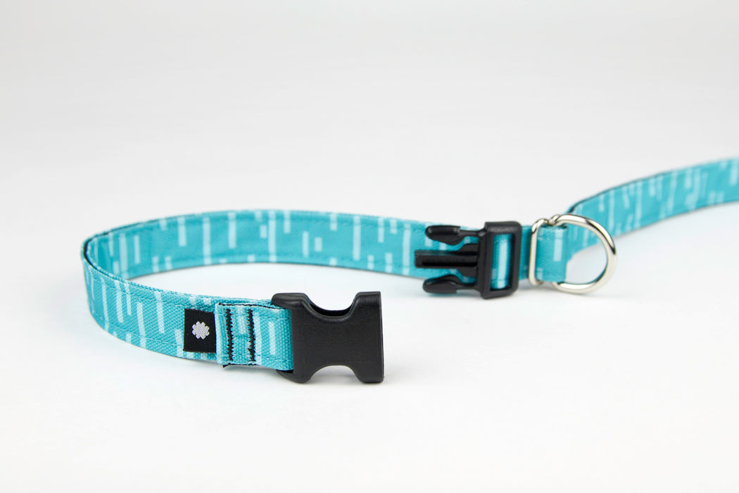 Pacifica Adjustable Dog Leash / Aqua - Wildebeest