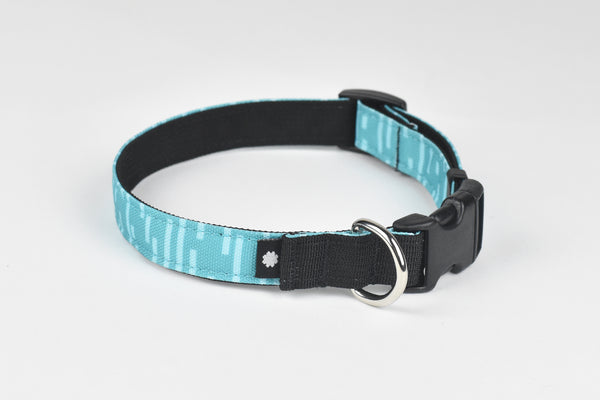 Pacifica Dog Collar / Aqua