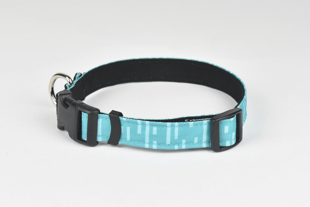 Pacifica Standard Dog Collar / Aqua