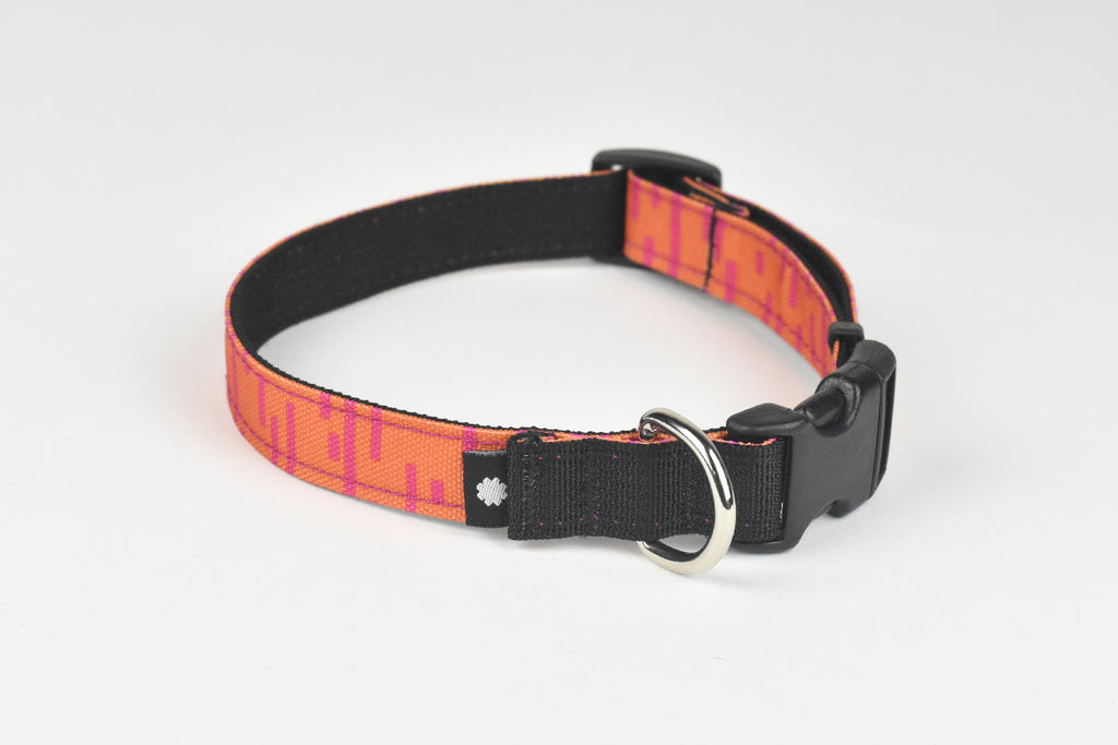 Pacifica Dog Collar / Coral