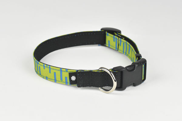 Pacifica Dog Collar / Lime