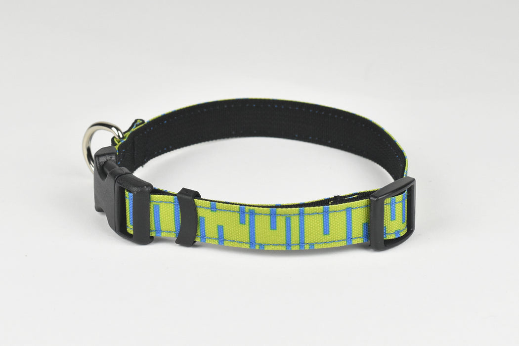 Pacifica Standard Dog Collar / Lime