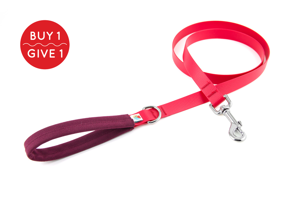 Funston Dog Leash / Redz Collection / Maroon
