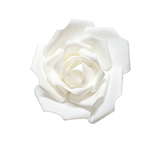 Wall Foam Rose Head