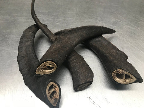 Goat Horns - Medium