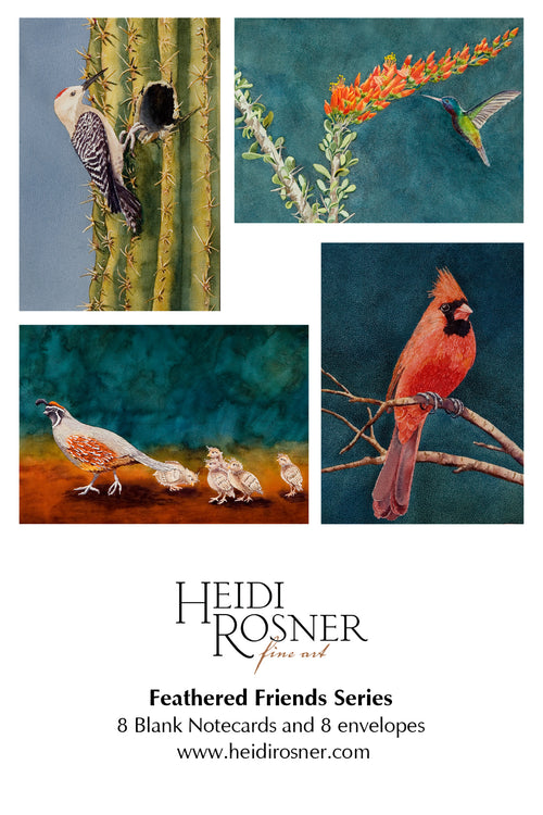 Feathered Friends notecards