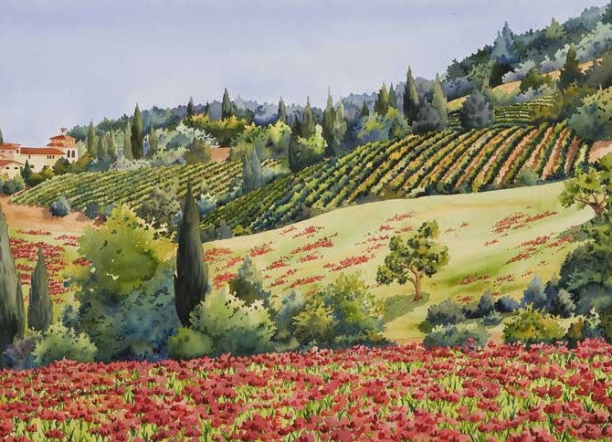 Fields of Poppies, Umbria