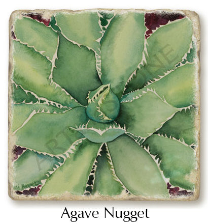 Agave Nugget