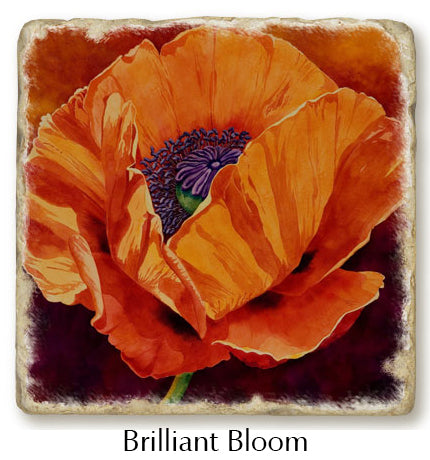 Brilliant Bloom