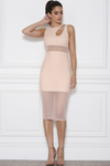 Bianca Mesh Dress - Nude