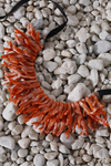 SURYA NECKLACE - CORAL