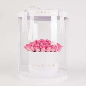 Premium White With Pink Roses By Bloomingbox - www.alabalii.com