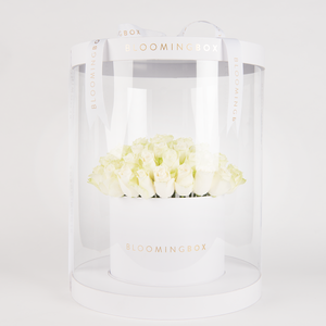 Premium White With White Roses By Bloomingbox - www.alabalii.com