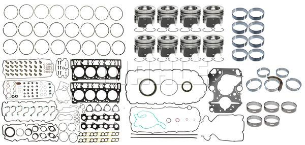 Mahle 789-1020 Heavy Duty Overhaul Kit
