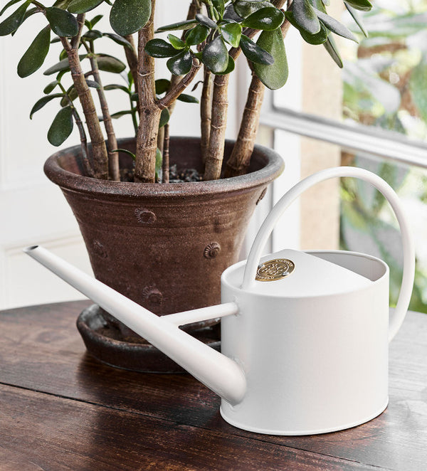 This week at designist
