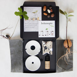 open botanopia gift set showing plates, seed mix and plant food; surrounded by plants and seeds on a white background