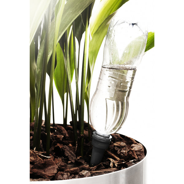 Self Watering Cone - Black