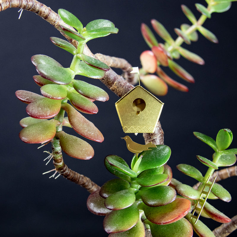 Tiny Birdhouse for your Houseplants