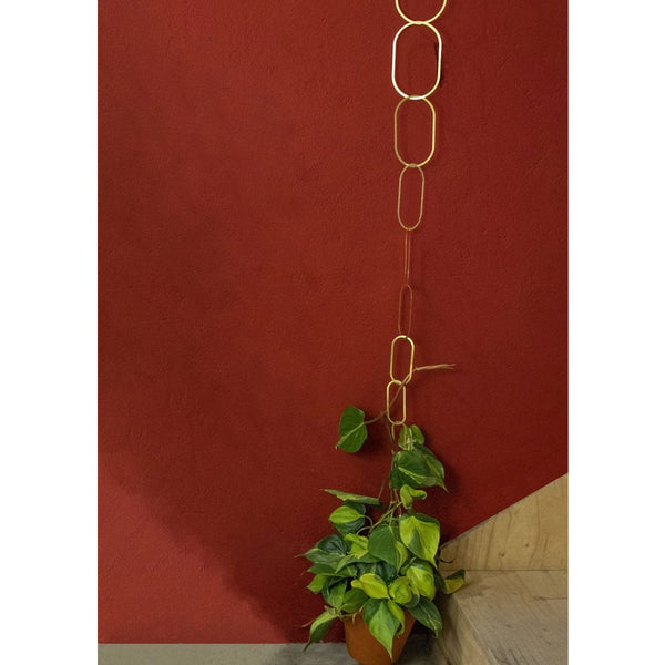 plant growing up the brass chain in front of a red wall