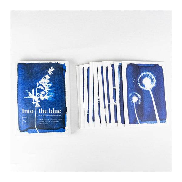 Set of 12 Cards - Cyanotype Prints