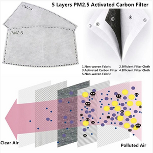 Filter for Fabric Mask (4 pack)