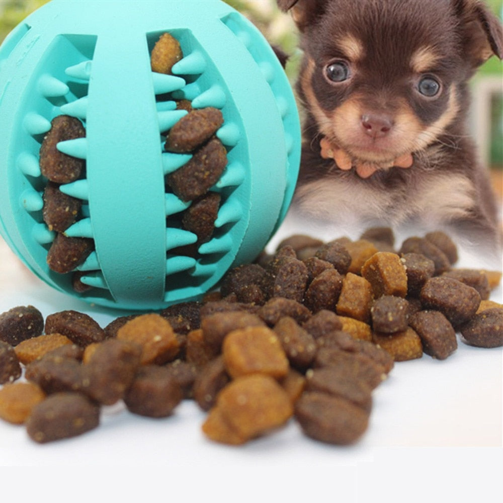 ChewBoy™ Treat Ball