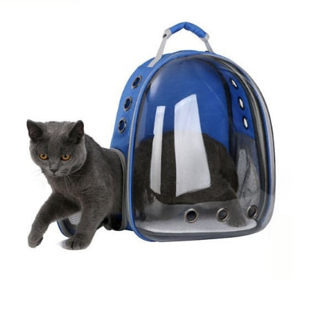 Cat Capsule Backpack