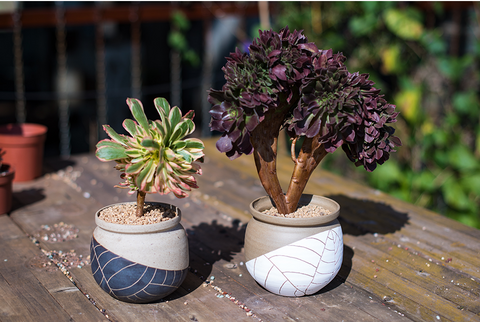 large handmade ceramic succulent planter
