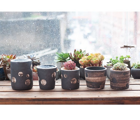 beautiful handmade succulent planter/pots -- indoor gardening/home decor